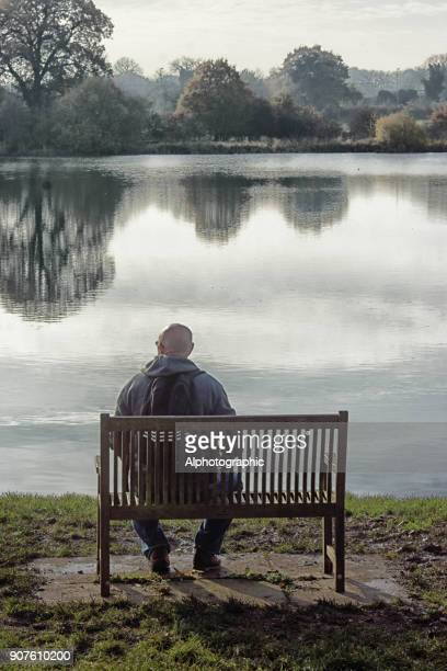 serenity in a country park - camera point of view stock photos and pictures