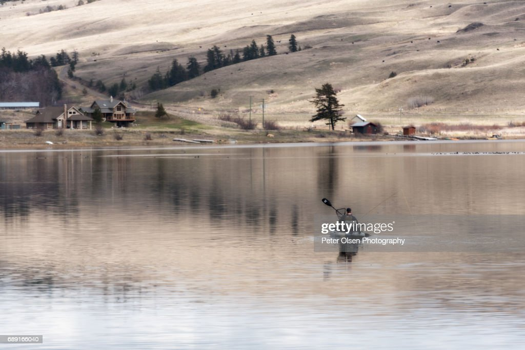 Serenity in the Grasslands : Stock Photo