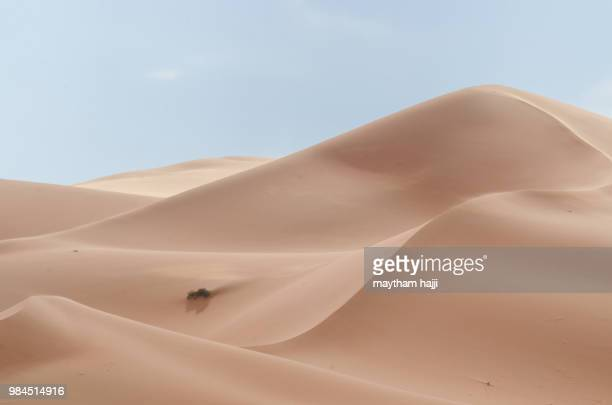 serenity - duna de arena fotografías e imágenes de stock