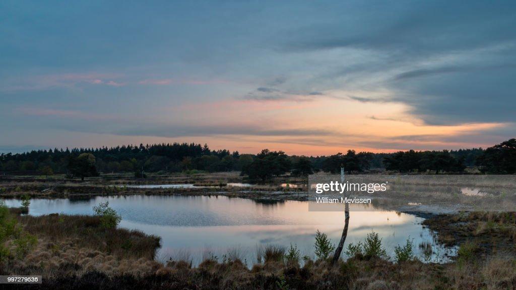 Serenity : Stockfoto