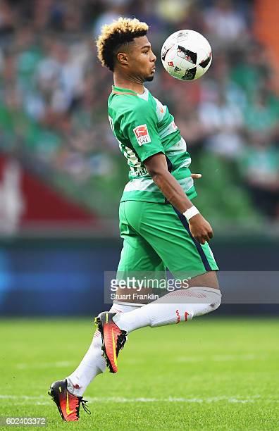 Serge Gnabry of Bremen in action during the Bundesliga match between Werder Bremen and FC Augsburg at Weserstadion on September 11 2016 in Bremen...