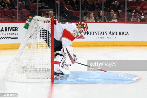Sergei Bobrovsky of the Florida Panthers prepares for the start of the second period against the Arizona Coyotes at Gila River Arena on February 25...