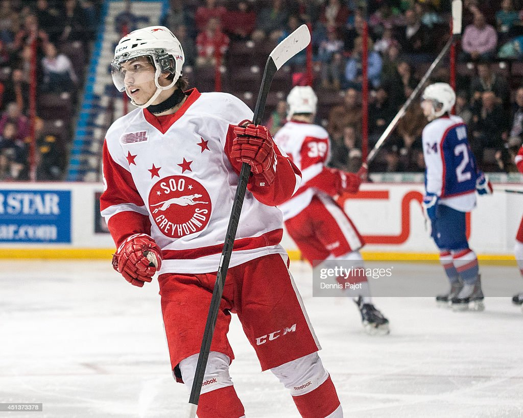 Sergey Tolchinsky #28 of the Sault Ste. Marie Greyhounds celebrates a goal against the Windsor Spitfires on March 9, 2014 at the WFCU Centre in Windsor, Ontario, Canada.