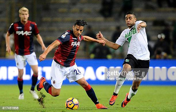 Sergio Floccari of Bologna FC in action during the Serie A match between Bologna FC and US Sassuolo at Stadio Renato Dall'Ara on October 23 2016 in...