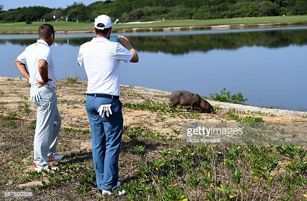Sergio Garcia of Spain and Bernd Wiesberger of Austria taking photos of a capybara on the 5th hole during a practice at Olympic Golf Course on August...
