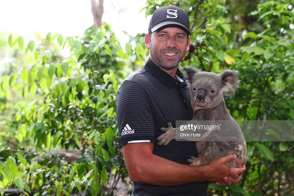 Sergio Garcia poses with a koala during a visit to Currumbin wildlife sanctuary during the 2017 Australian PGA Championship at Royal Pines Resort on November 30, 2017 in Gold Coast, Australia.