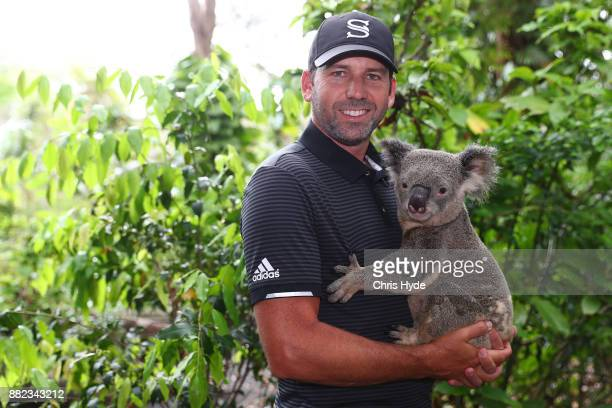 Sergio Garcia poses with a koala during a visit to Currumbin wildlife sanctuary during the 2017 Australian PGA Championship at Royal Pines Resort on...
