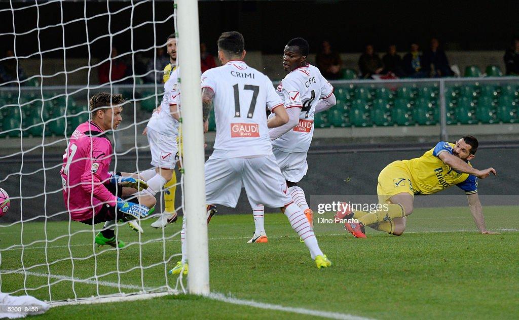 Sergio Pellissier (R) of Chievo Verona scores his opening goal during the Serie A match between AC Chievo Verona and Carpi FC at Stadio Marc'Antonio Bentegodi on April 9, 2016 in Verona, Italy.