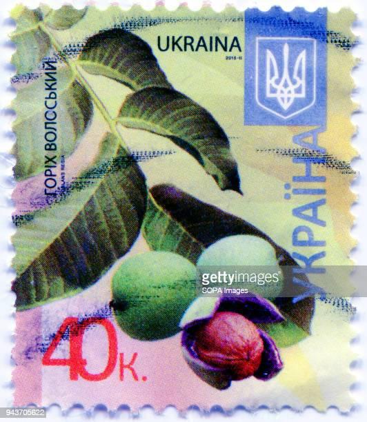 A series of 'Flora of Ukraine Postage stamp shows the image of Walnut Ukraine 2015