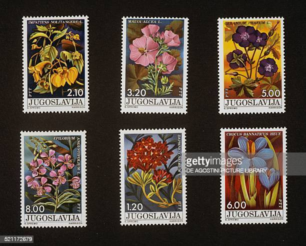 Series of postage stamps commemorating the Day of Youth, depicting woodland plants top, Touch-me-not Balsam and Greater musk-mallow , centre, Dusky...