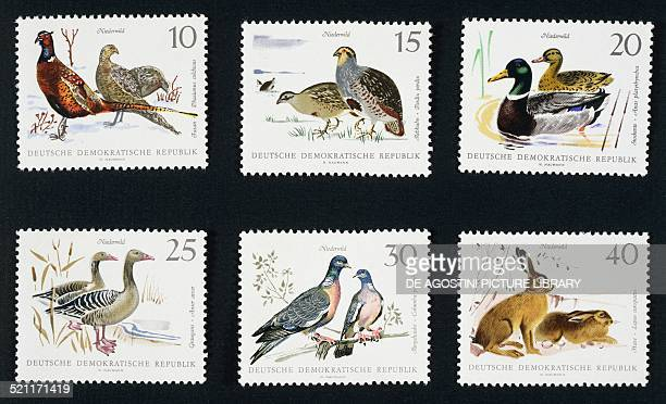 Series of postage stamps honouring Game hunting depicting top from left Pheasants Partridges and Mallards bottom from left Wild Geese Doves and Hares...
