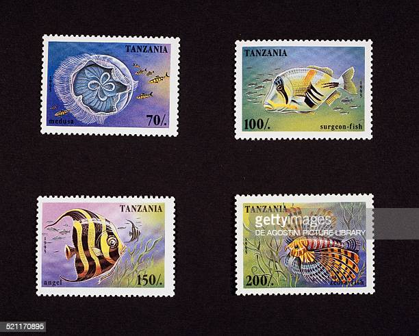Series of postage stamps honouring Underwater animals depicting top from left Russian scooter and German velocipede bottom from left Angel fish and...