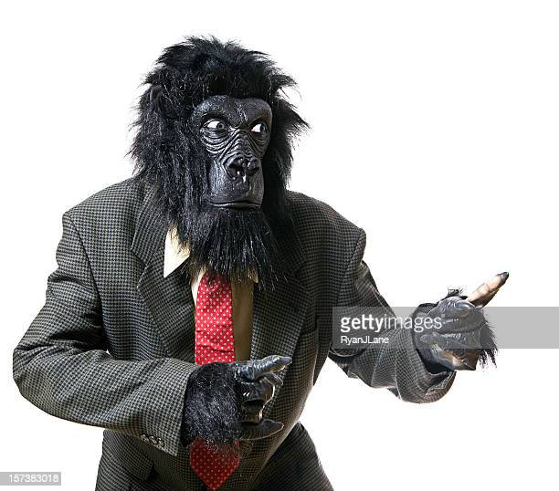 serious displeased gorilla businessman portrait - monkey suit stock pictures, royalty-free photos & images