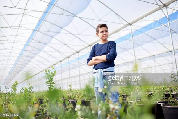 Serious Hispanic boy standing in greenhouse