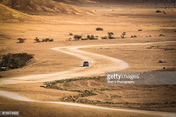 Serpentine desert path