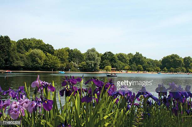 serpentine lake in hyde park london - hyde park london stock photos and pictures