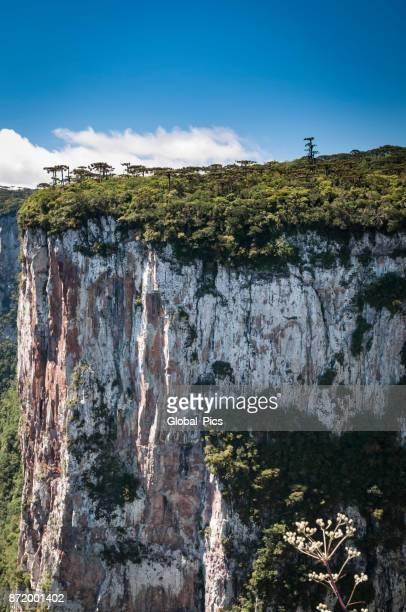セラ ジェラール山脈 (cânion か itaimbezinho) - リオグランデドスル州 ストックフォトと画像