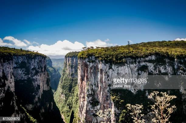 Serra Geral (Cânion do Itaimbezinho)