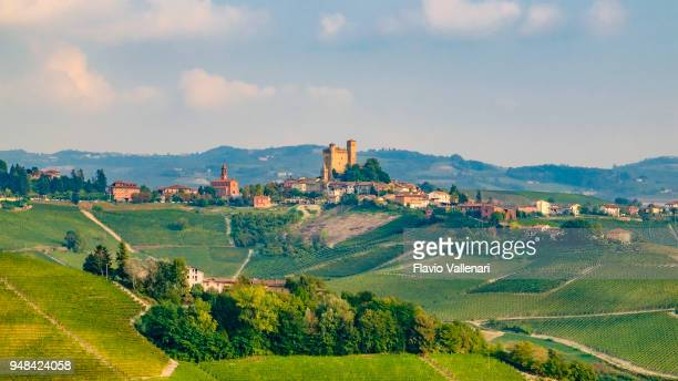 serralunga d'alba in the langhe, a hilly area mostly based on vine cultivation and well known for the production of barolo wine. province of cuneo, piedmont, italy - 16x9 format stock pictures, royalty-free photos & images