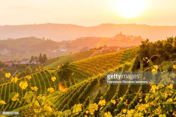serralunga d'alba, piemonte. - tuscany stock pictures, royalty-free photos & images