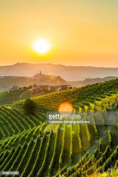 serralunga d'alba, piemonte. - piedmont italy stock pictures, royalty-free photos & images