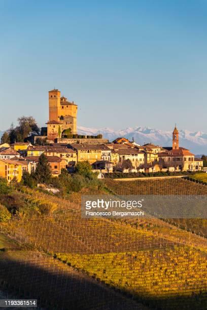 serralunga d'alba vineyards at sunrise. - italia ストックフォトと画像