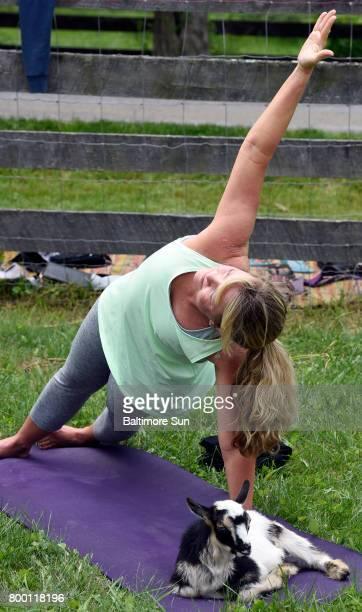 Serrina Davis shares a yogo mat with a Pygmy goat during goat yoga at Lil' Holler Farm near Westminster June 3, 2017.