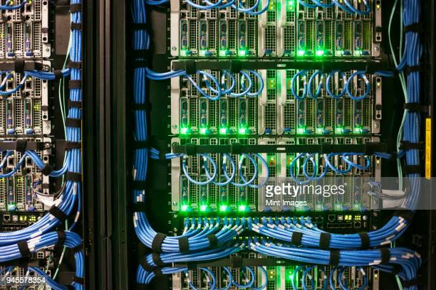 servers with cat 5 cables on racks in a large computer server farm. - cable stock pictures, royalty-free photos & images