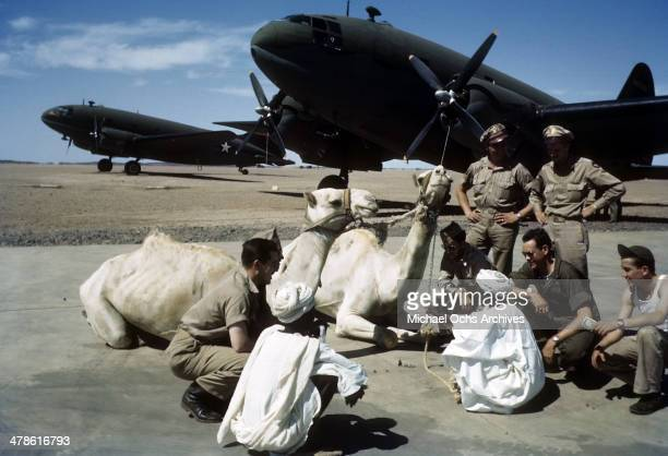 US service men and local tribesmen talk by the Wadi Seidna air strip as C46 Commando planes are on the runway at the US Army Air Force/Royal Air...