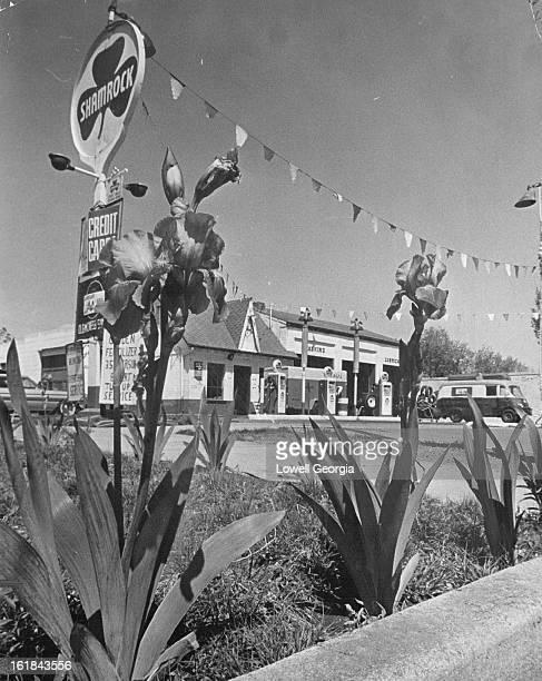 MAY 16 1964 5291964 Service Stations Harold's Shamrock Service Sta Kalamath