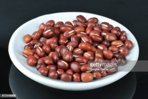 Serving dish of Asian Adzuki beans (Vigna angularis)