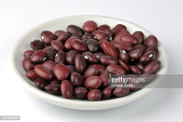 Serving of Red Chili Beans (Phaseolus vulgaris)