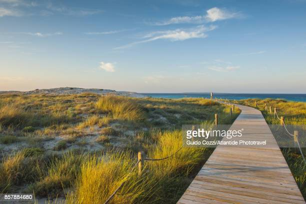ses illetes beach - boardwalk stock pictures, royalty-free photos & images