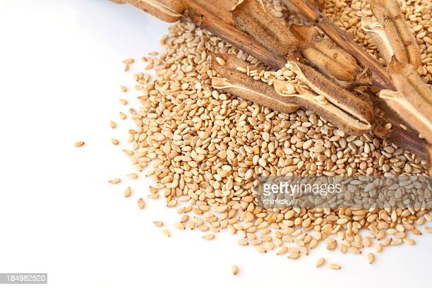 sesame - sesame stock pictures, royalty-free photos & images
