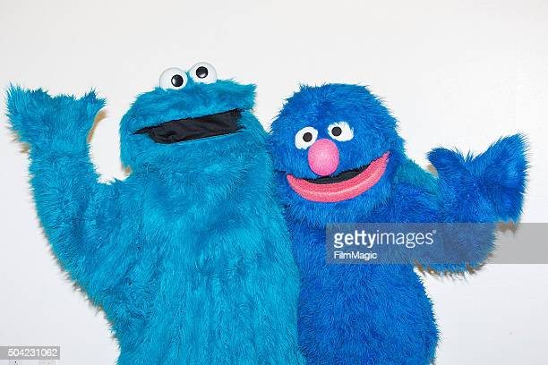 Sesame Street characters Cookie Monster and Grover pose backstage at Sesame Street and HBO Host Free Museum Day with a special performance by Elmo...