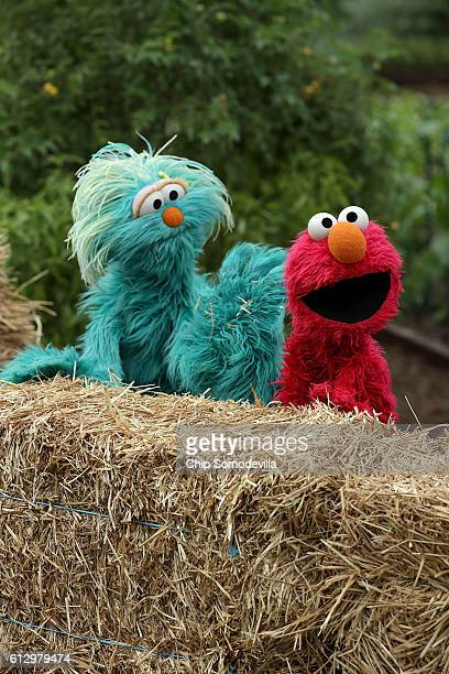 Sesame Street's Elmo and Rosita provide commentary during an event to harvest the White House Kitchen Garden with US first lady Michelle Obama on the...