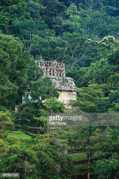 CONTENT] Set amidst thick trees Palenque contains a few of the finest Mayan sculpture architecture roof comb as well as basrelief carvings of the...
