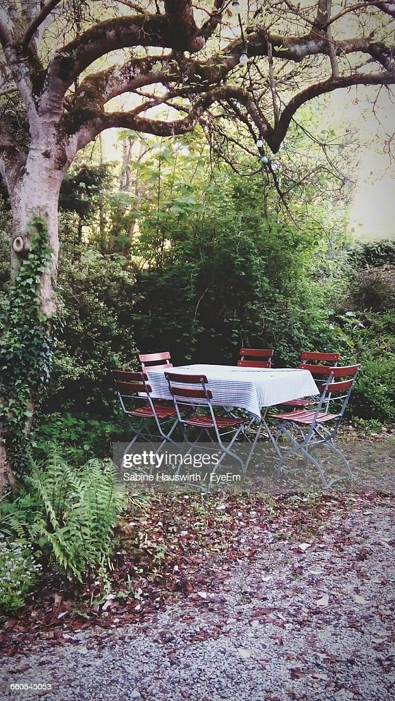 Set Dining Table Outdoors : Stock-Foto