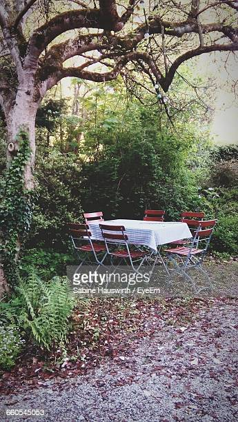 set dining table outdoors - sabine hauswirth stock pictures, royalty-free photos & images