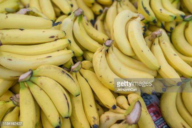 set of bananas background - banana stock pictures, royalty-free photos & images