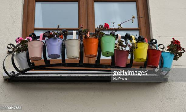 Set of colorful flower pots seen in the center of Dublin. On Monday, November 16 in Dublin, Ireland.