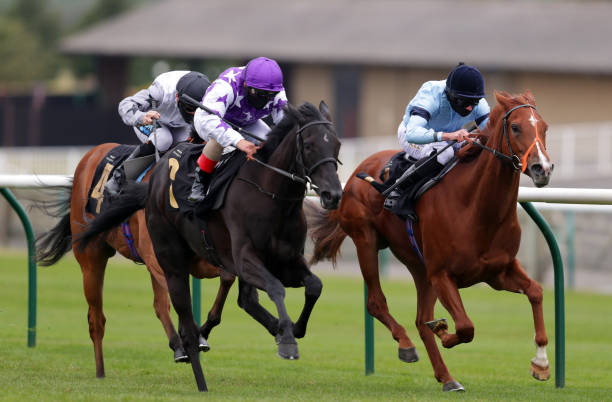 GBR: Newmarket Races