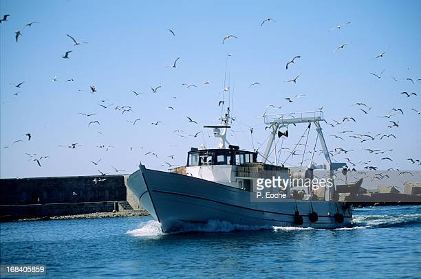 Sete trawler returning to port