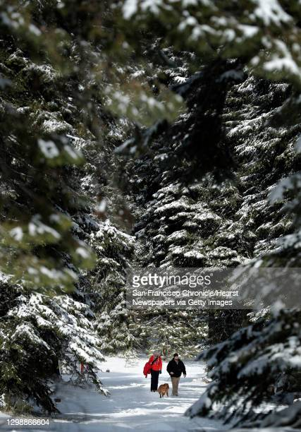 Seth and Leilani Andrus walk their dogs Charlie and Rosie near Hyatt Lake in the Cascade-Siskiyou National Monument outside of Ashland, Ore., on...