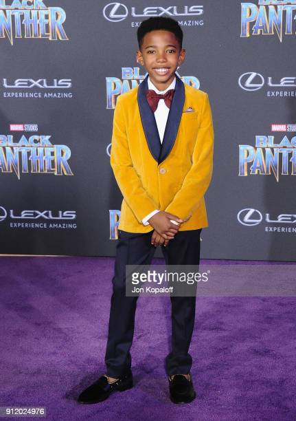Seth Carr attends the Los Angeles Premiere 'Black Panther' at Dolby Theatre on January 29 2018 in Hollywood California