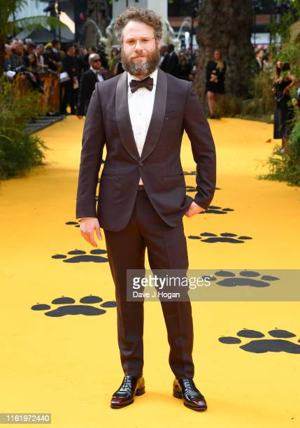 Seth Rogen attends The Lion King European Premiere at Leicester Square on July 14 2019 in London England