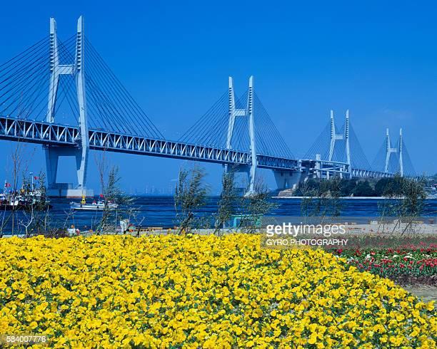 seto ohashi bridge, sakaide, kagawa prefecture, japan - kagawa ストックフォトと画像
