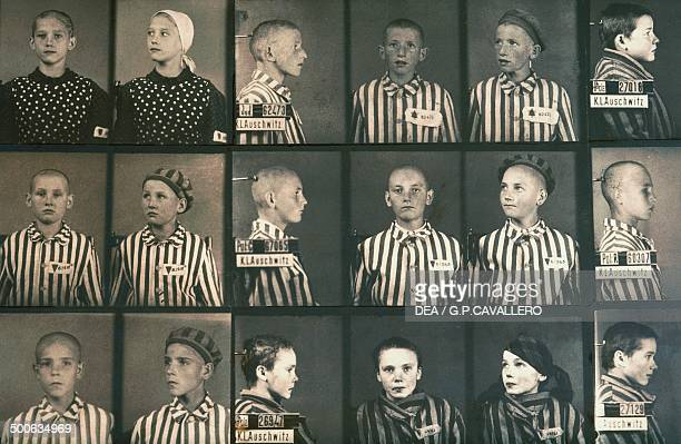 Sets of prisoner identification photos of child inmates of the German Nazi concentration camp at AuschwitzBirkenau Poland during World War II The...