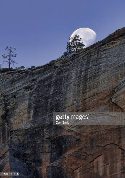 Setting Moon Over Zion Canyon