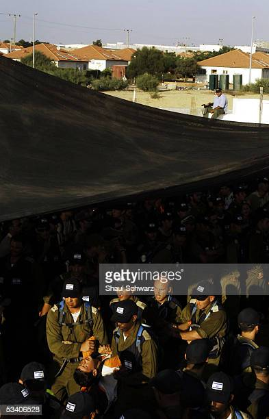 A settler protester is taken away by military police from the synagogue after it was raided August 18 2005 the Israeli settlement of Neve Dekalim in...
